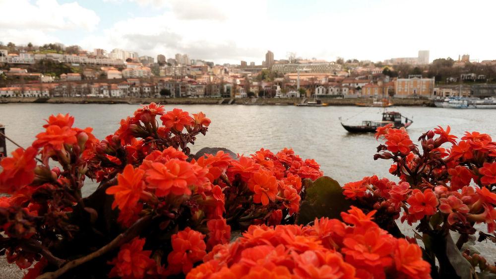 Vista do rio Douro que atravessa o norte de Portugal até a foz perto das cidades do Porto e Vila Nova de Gaia. É o terceiro rio mais extenso da península Ibérica