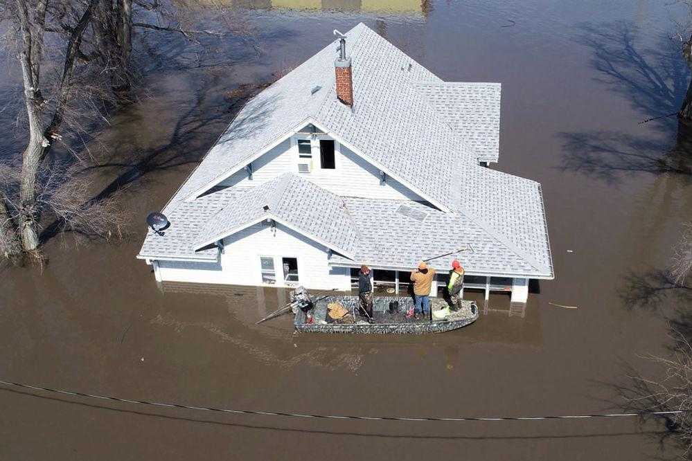 Equipe de resgate retira gatos de casa inundada em resultado da cheia no Missouri, EUA