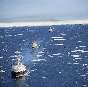 Caravana de navios na Rota Marítima do Norte (foto de arquivo)