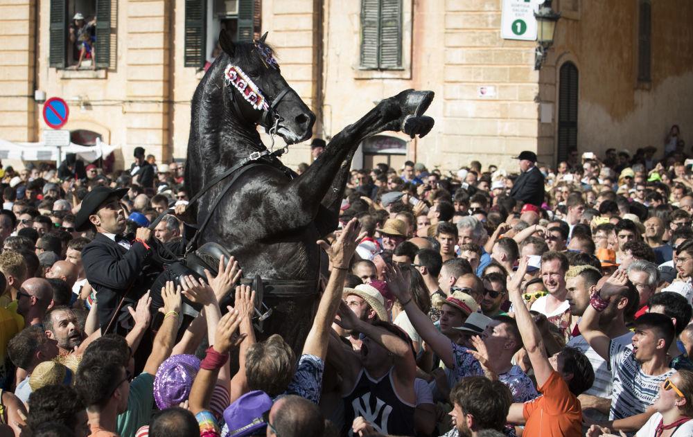 Um cavalo empina no meio da multidão durante o Caragol des Born, um encontro de pessoas e cavalos ao ritmo da música durante a festa tradicional de São João