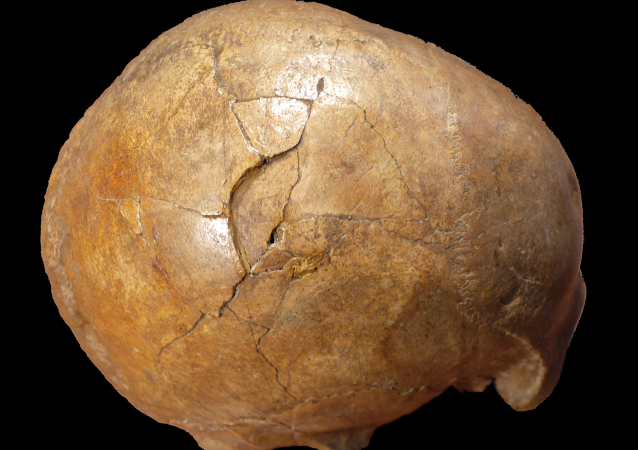 Restos mortais fossilizados do homem do Paleolítico conhecido como Cioclovina calvaria