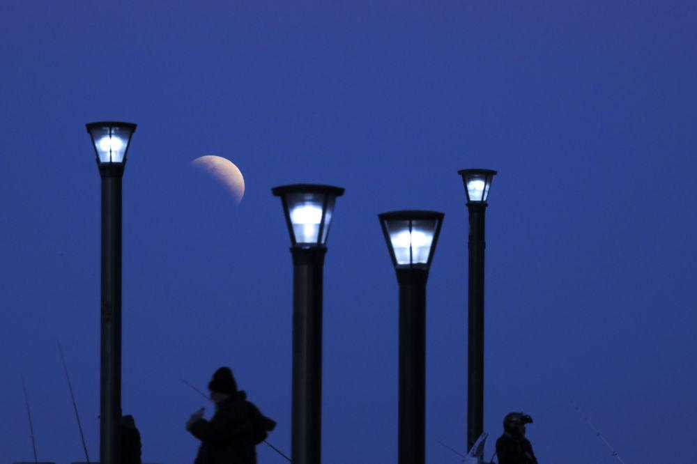 Homem observa eclipse lunar parcial em Buenos Aires, Argentina