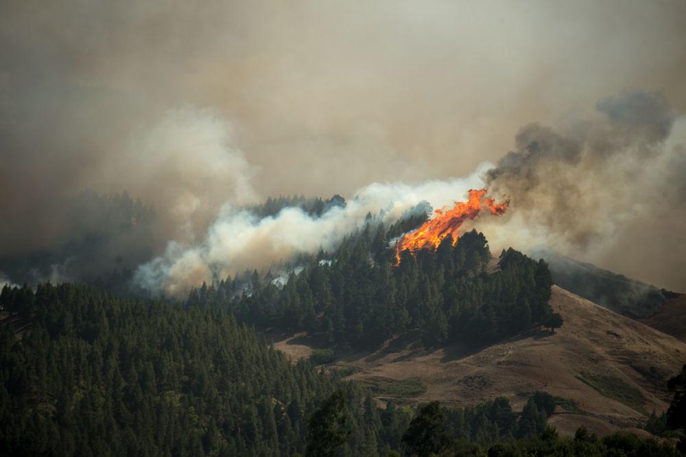 Incêndio florestal na ilha Gran Canária, Espanha