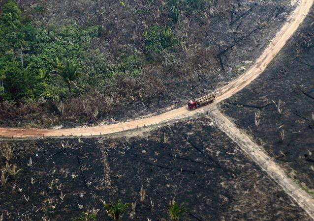 Vista de cima das queimadas na Amazônia