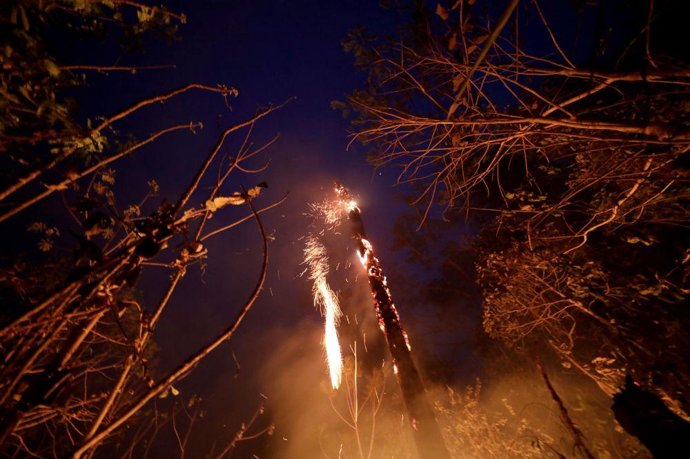 Floresta Amazônica em chamas
