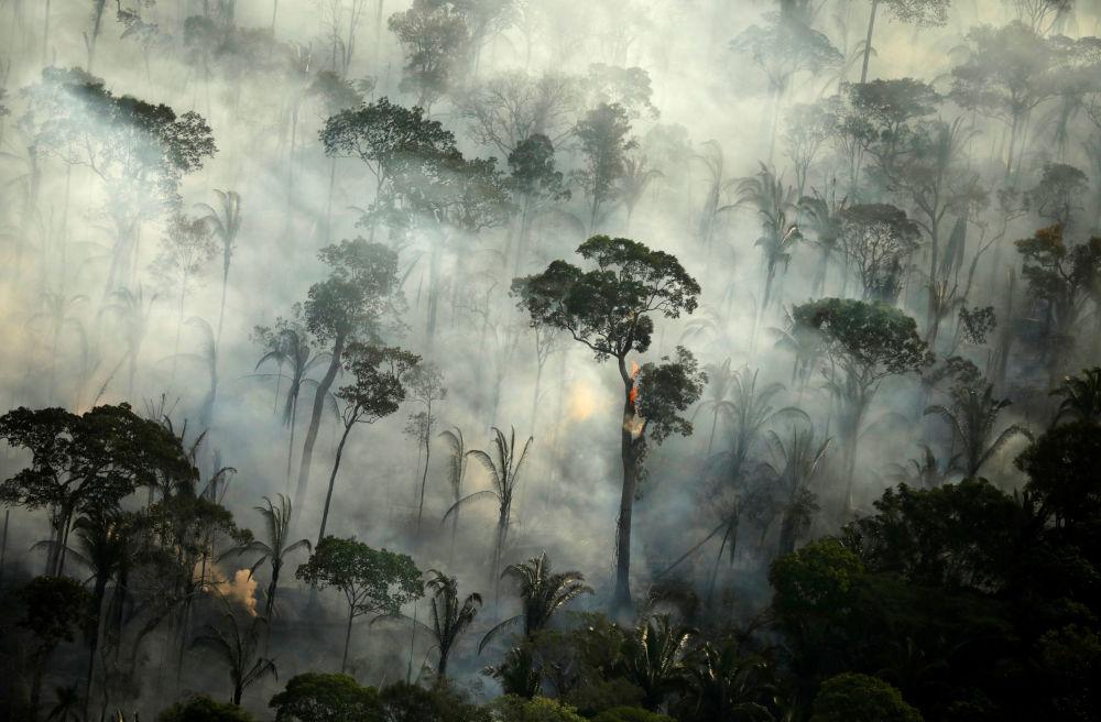 Fumaça densa causada por incêndio em área da floresta amazônica perto de Porto Velho, estado de Rondônia, Brasil, 10 de setembro de 2019