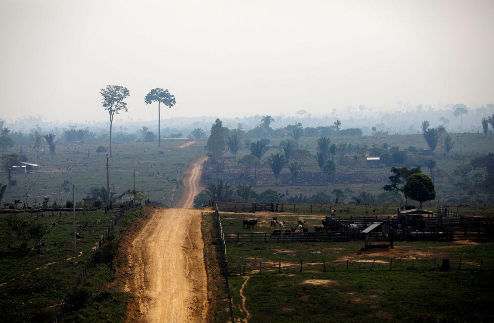 Vista área de aérea desmatada na Floresta Nacional do Bom Futuro, estado de Rondônia, Brasil, 12 de setembro de 2019