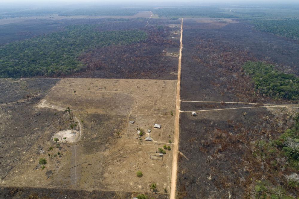 Território recentemente queimado e desmatado por pecuaristas no estado do Amazonas, Brasil, 2 de setembro de 2019