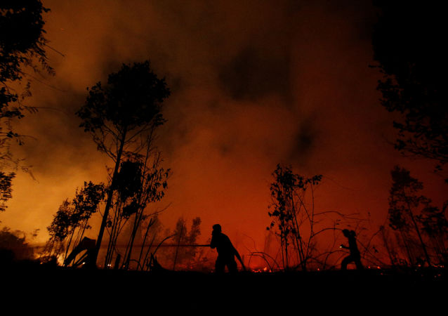 Incêndio florestal na Indonésia, em 14 de setembro de 2019
