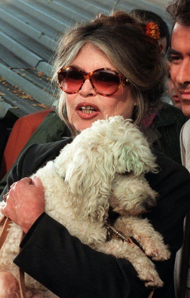 Brigitte Bardot com cachorro na região parisiense, em 1994