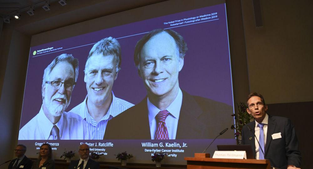 Ganhadores do Nobel de Fisiologia ou Medicina 2019, cientistas William Kaelin, Peter Ratcliffe e Gregg Semenza, 7 de outubro de 2019