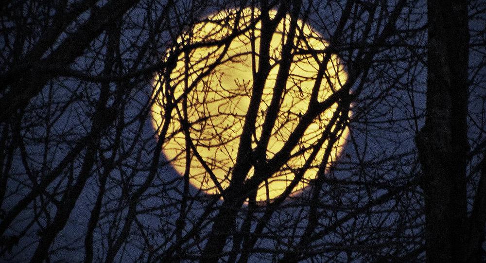 Uma lua cheia (foto de arquivo)