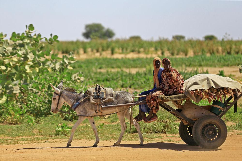 Sudanesas em uma carroça próximo a um campo de refugiados em Al-Fashir, Sudão.