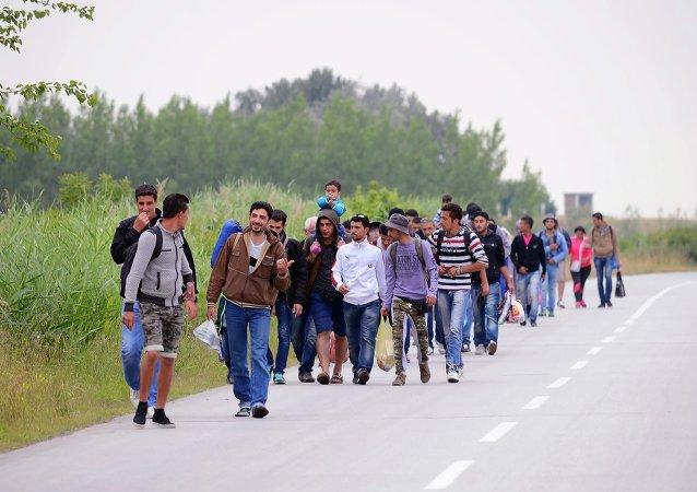 Migrantes, principalmente da Síria, andam em grupos em direção à Hungria em Kanjiza, no norte da Sérvia, perto da fronteira entre os dois países