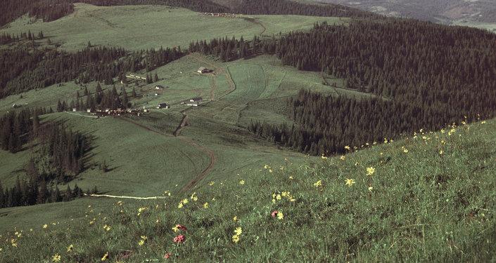 Vilarejo na região de Bucovina
