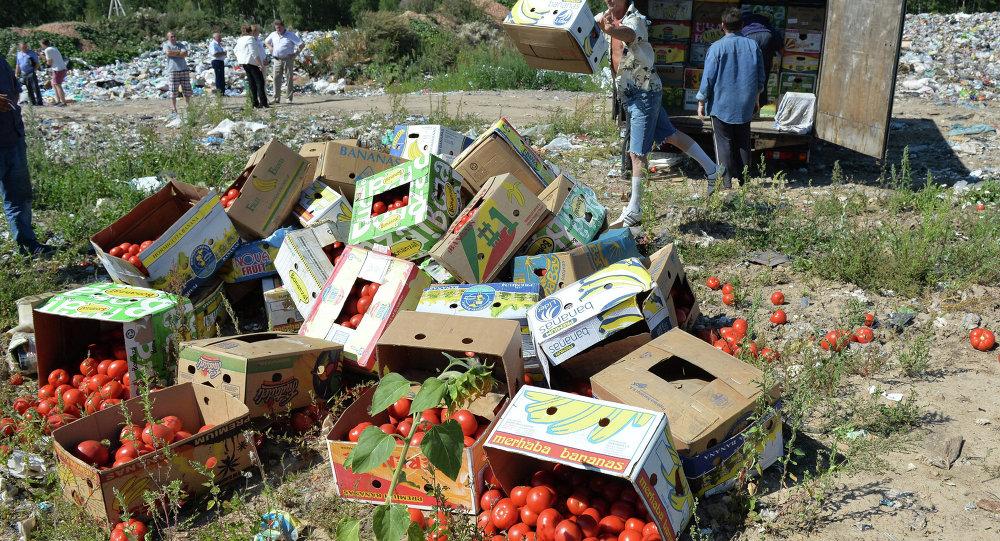 Tomates proibidos de entrar na Rússia destruídos na fronteira com a Bielorrússia, na região de Smolensk