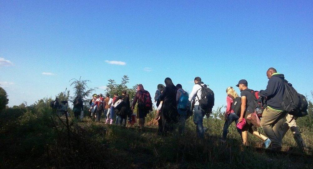 Coluna de refugiados atravessa fronteira entre Sérvia e Hungria
