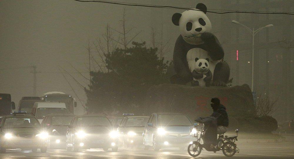 Um cidadão de Pequim está perto do monumento famoso de pandas na área Wangjing. 1 de dezembro, 2015