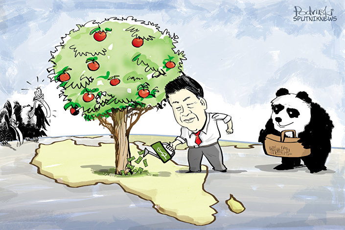 O novo pacote dos investimentos chinês em África constitui 74 bilhões de dólares. Este é um dos resultados da missão africana do presidente chinês Xi Jinping.