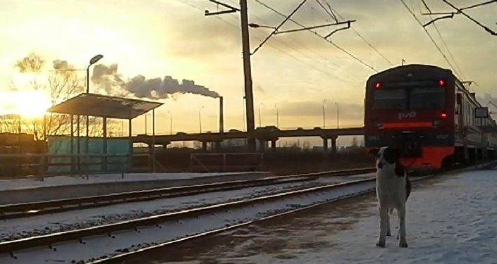 Ferrovia na Rússia