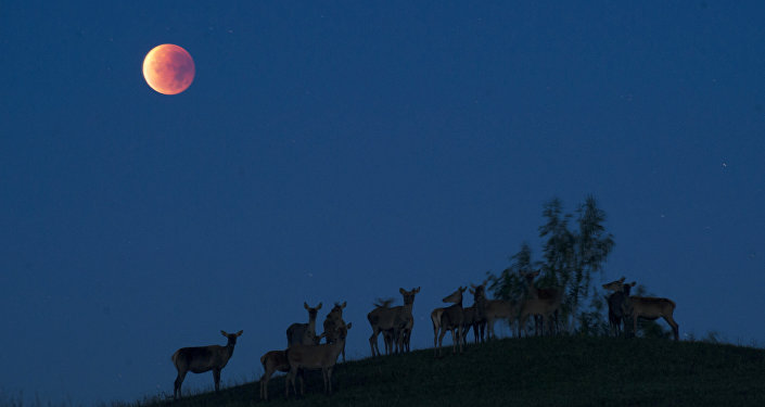 Lua vista em um monte na Bielorrússia