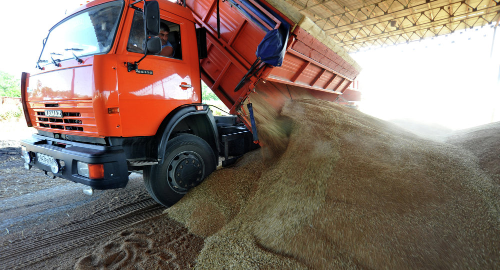 Colheita de trigo na região de Rostov, na Rússia