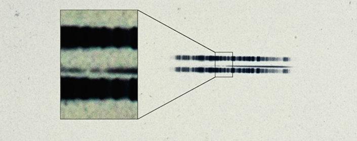 """A foto de arquivo do Observatório. Na foto, que tem quase cem anos, é surpreendentemente fácil ver as linhas fortes do elemento cálcio. O espectro é fino com a linha escura no centro da imagem. As faixas escuras acima e abaixo são usadas para calibrar o comprimento de onda e para realçar as duas bandas de absorção """"em falta"""" na estrela."""