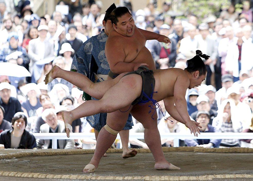 Festival Homozumo no Japão