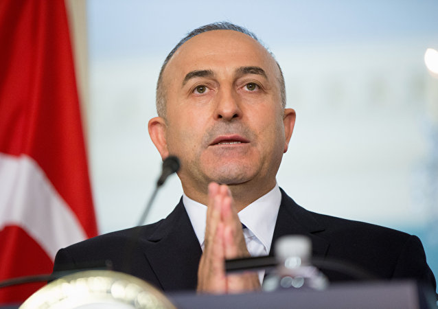 Mevlut Cavusoglu. File photo
