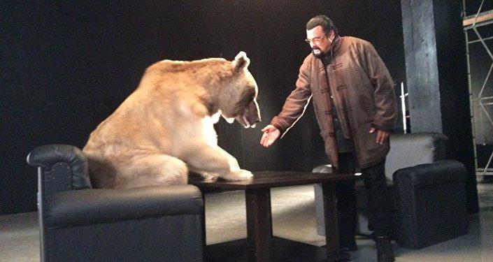 Urso Stepan