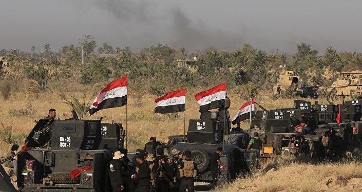 Exército iraquiano em ofensiva para retomar Fallujah