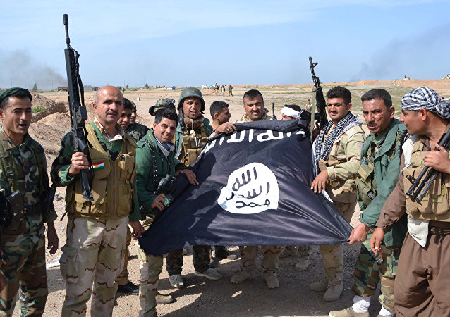 Combatentes curdos Peshmerga