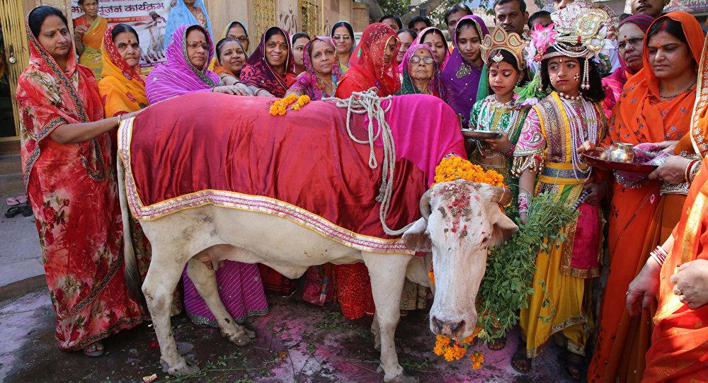 Hindus vestidos como Senhor Krishna e Radha se reúnem durante uma Gho Puja - adoração da vaca - por ocasião da Gopal Ashtami em Jodhpur em 19 de Novembro de 2015.