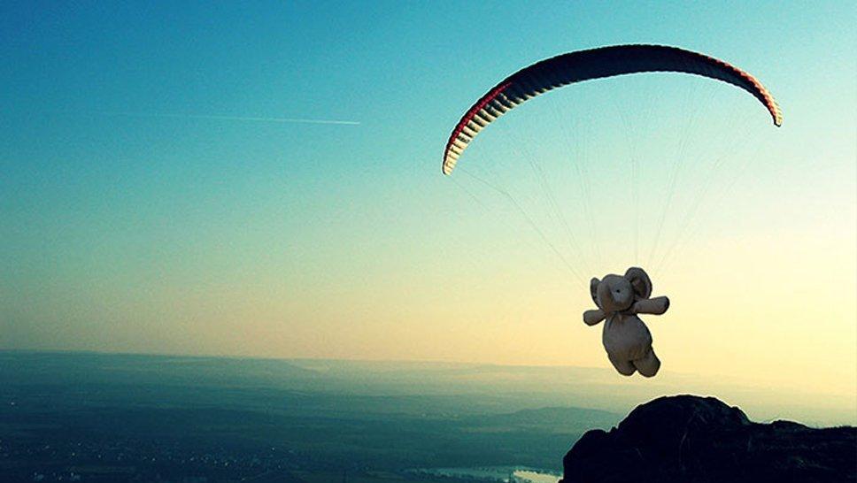 Elefante de pelúcia perdido também pode voar de parapente