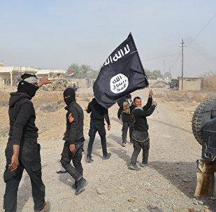 Soldados do governo iraquiano comemoram retomada do controle sobre a província de Diyala, enquanto um deles exibe uma bandeira apreendida do Daesh (foto de arquivo)
