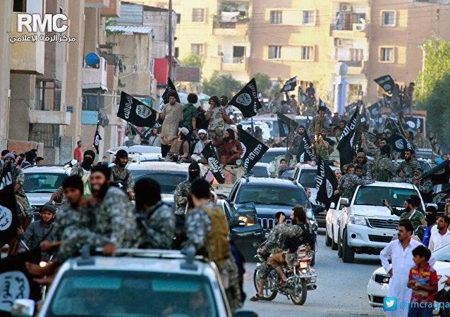 Grupo de oposição síria no norte da Síria (foto de arquivo)