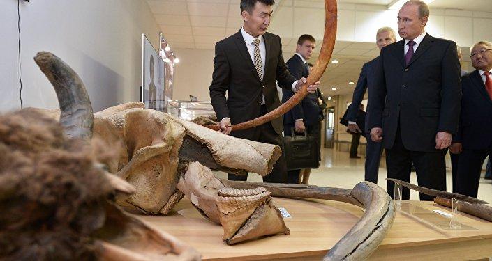 Vladimir Putin, presidente da Rússia, durante a visita no Museu do Mamute em Yakutsk