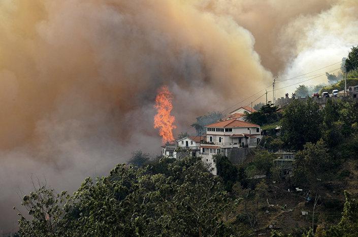 Incêndio florestal avançou para a zona histórica da cidade do Funchal, capital da Ilha da Madeira, em Portugal