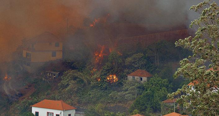 Incêndios florestais em Portugal, Curral dos Romeiros, 9 de agosto de 2016