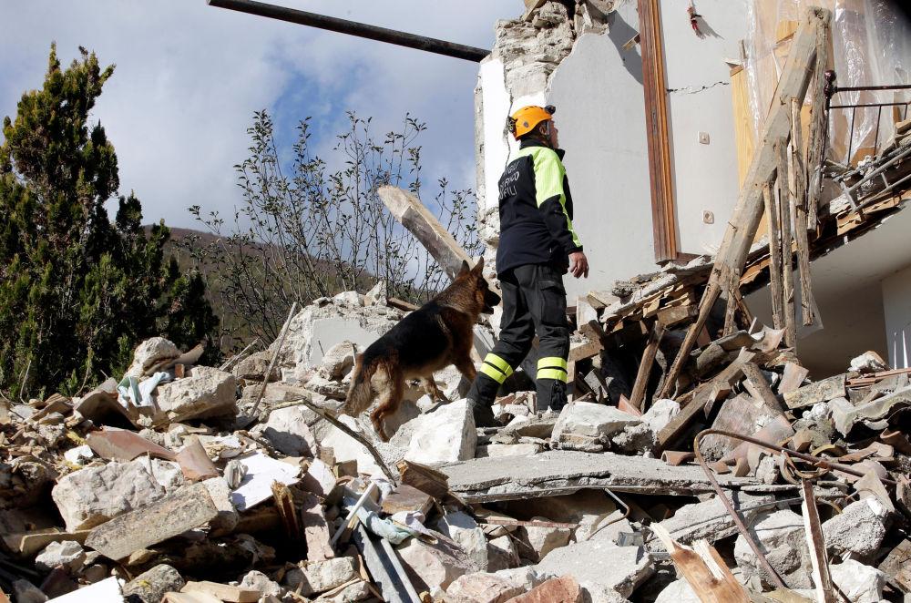 Vários milhares de pessoas ficaram desabrigadas em consequência de um forte terremoto que ocorreu na quarta-feira à noite no centro da Itália