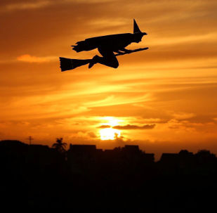 Самолет на радиоуправлении в виде ведьмы на закате в Калифорнии