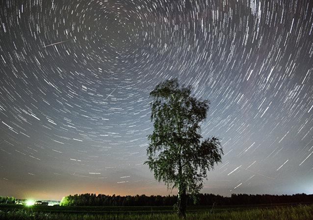 Árvore e ao fundo chuva de meteoros (foto de arquivo)