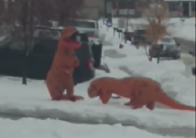 Guerra de bola de neve entre tiranossauros