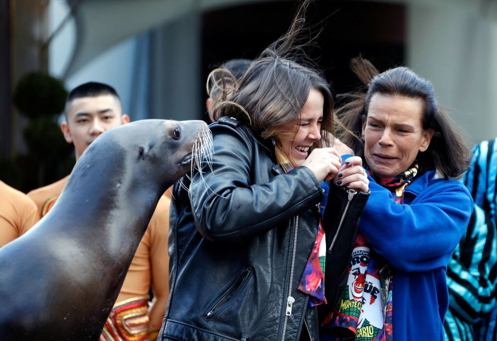 Princesa do Mônaco com sua filha tentam tirar foto com leão-marinho no Festival Internacional de Circo