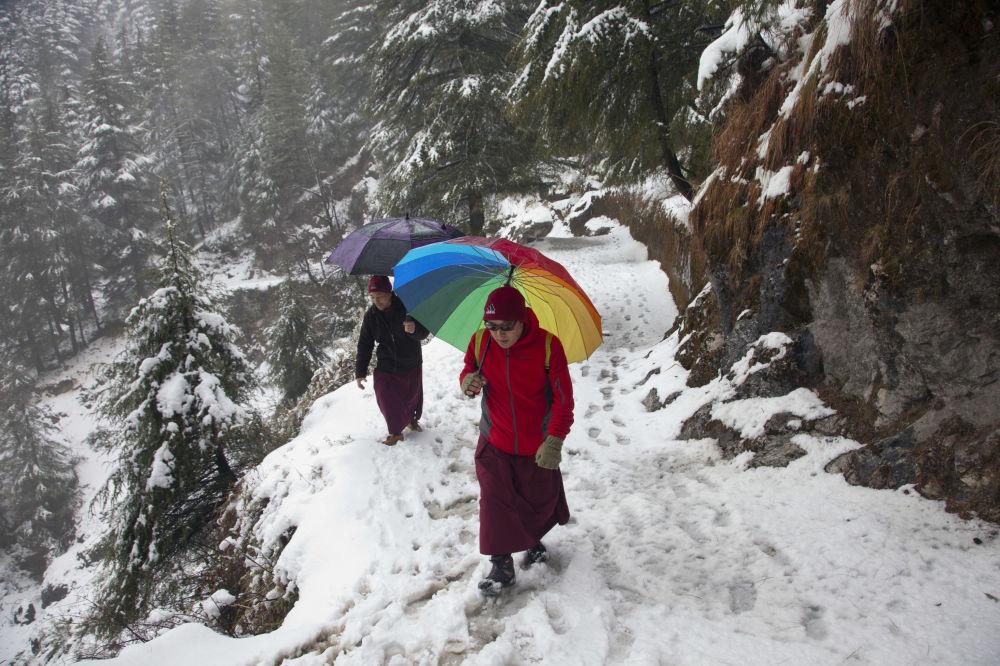 Monges budistas em caminho coberto de neve em Dharmsala, na Índia