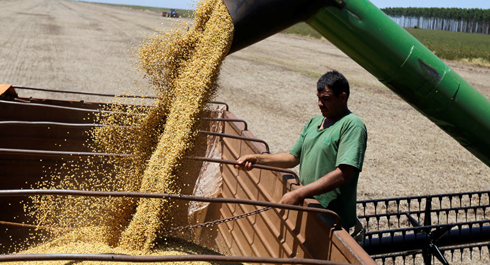 Soja é a principal commodity brasileira que interessa aos chineses