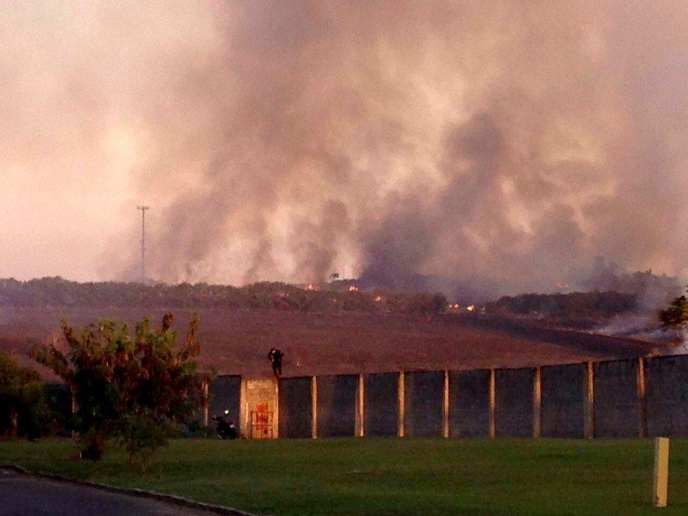 O incêndio na área rural devastou a região atraindo os animais silvestres para o condomínio