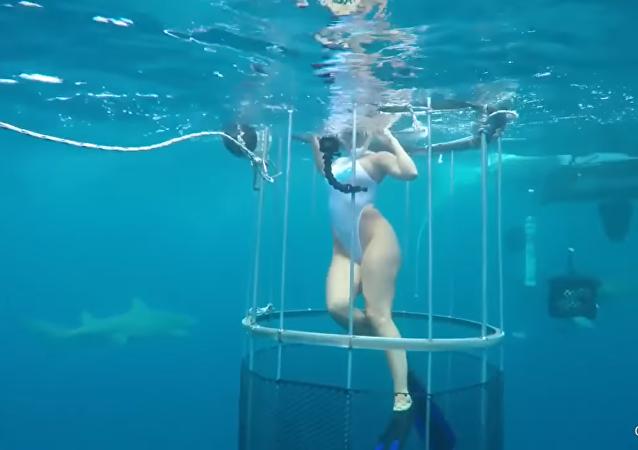 Estrela pornô quase não se salva após ataque de tubarão