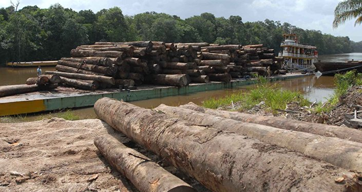 Temer x Amazônia: ameaça ao meio ambiente ou à soberania nacional?, Temer x Amazônia: ameaça ao meio ambiente ou à soberania nacional?, Guarulhos Gng