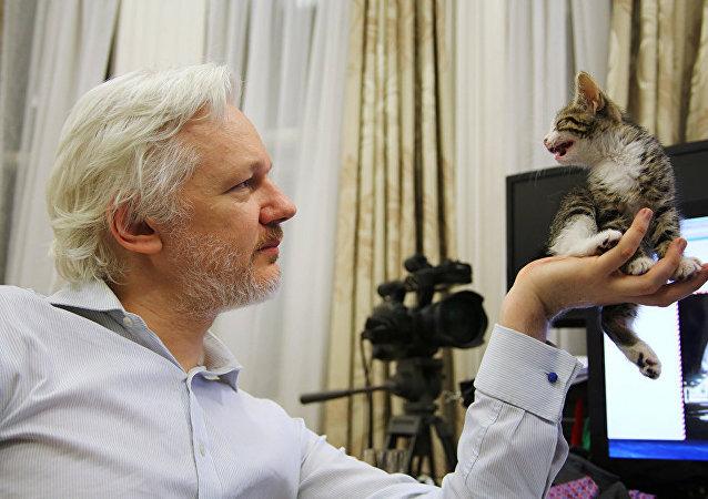 O fundador do Wikileaks admira seu novo amigo, ainda filhote